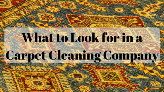 What to Look for in a Carpet Cleaning Company in Cincinnati